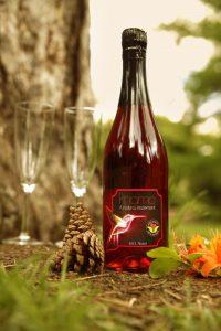 Priamo Lifestyle Getränk für Frauen